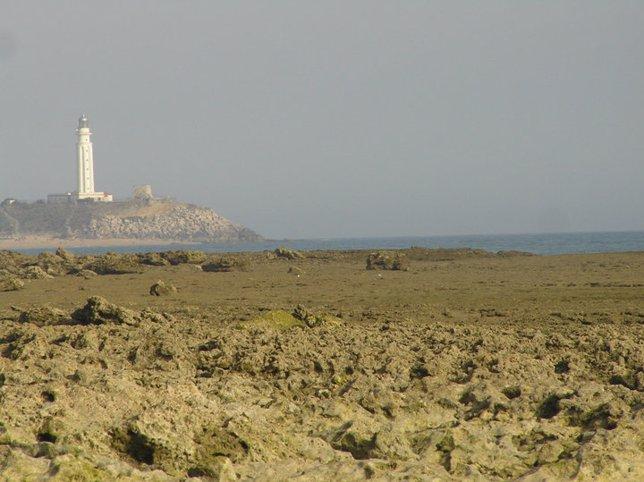 Faro de Trafalgar, en Vejer de la Frontera