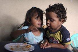 Unos 925 millones de personas sufrirán este año hambre crónica, 98 millones menos que en 2009, según la ONU