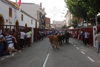 """Comienzan los encierros de Bargas (Toledo) con """"absoluta normalidad"""" y una afluencia """"multitudinaria"""""""