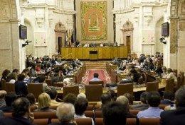 Imagen Del Pleno Del Parlamento
