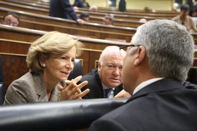 Elena Salgado en el Congreso de los Diputados