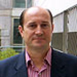 El concejal del PP en el Ayuntamiento de Córdoba Federico Cabello de Alba