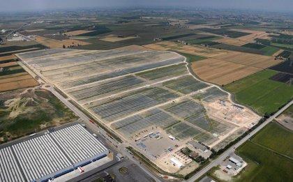 SunEdison vende por 276 millones la mayor planta fotovoltaica de Europa a First Reserve