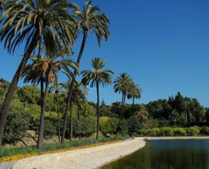 El número de visitas al Jardín Botánico La Concepción desciende un 22% respecto a 2009