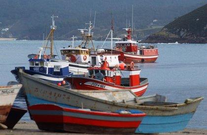 La Xunta destinará 62.000 euros al impulso de la construcción naval en madera