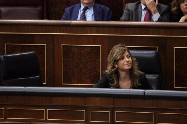 Bibiana Aído en el Congreso