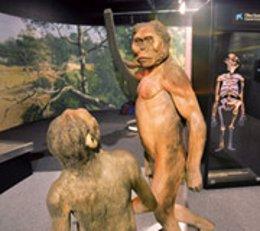 Exposición 'Orígenes', de 'la Caixa'