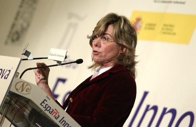 Eurodiputada del grupo popular europeo y ex ministra de Educación, Pilar del Cas