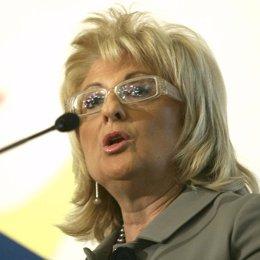 La presidenta de la Comisión Nacional de la Energía (CNE), María Teresa Costa,