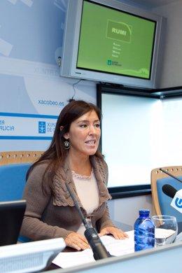 Beatriz Mato presentará en rolda de prensa o Rexistro Unificado de Maltrato Infa