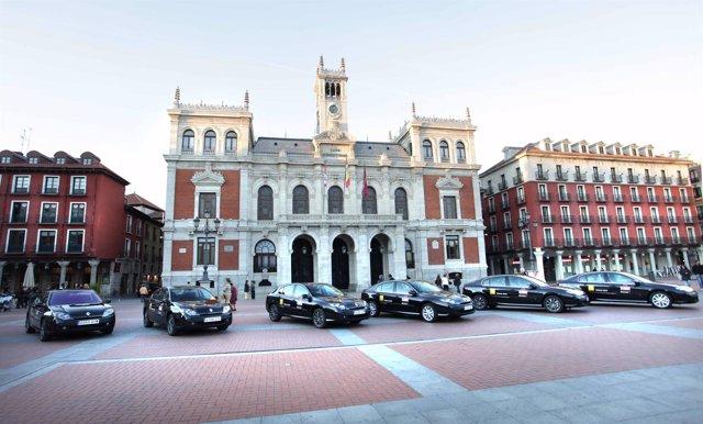 Renault, marca oficial de la Seminci de Valladolid
