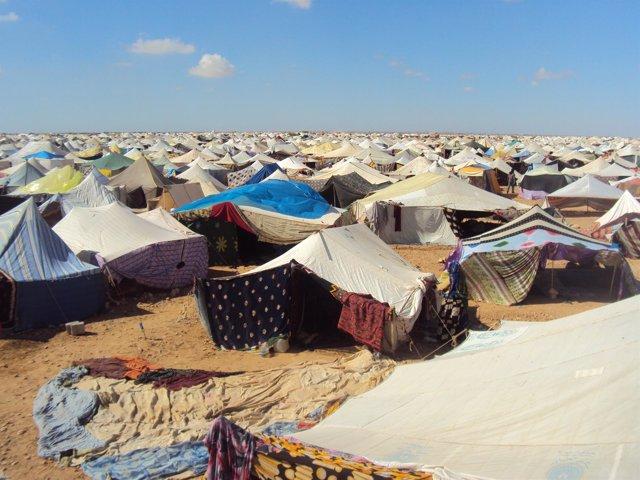 Campamento de protesta El Aaiún. Sáhara Occidental saharaui
