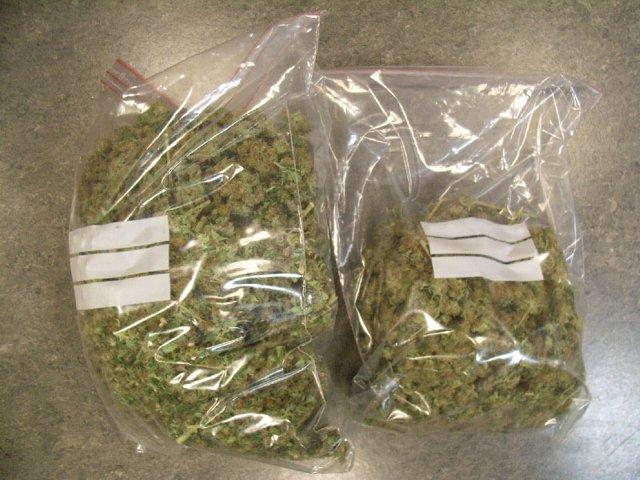 Parte del cannabis hallado en la vivienda.