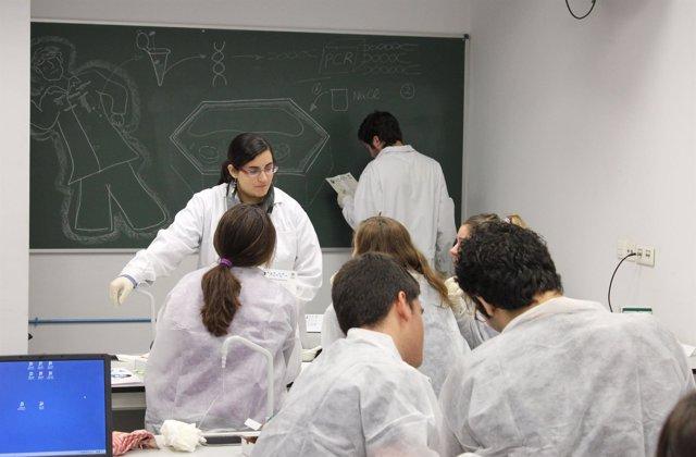 Alumnos de la UPO durante la semana de la Ciencia