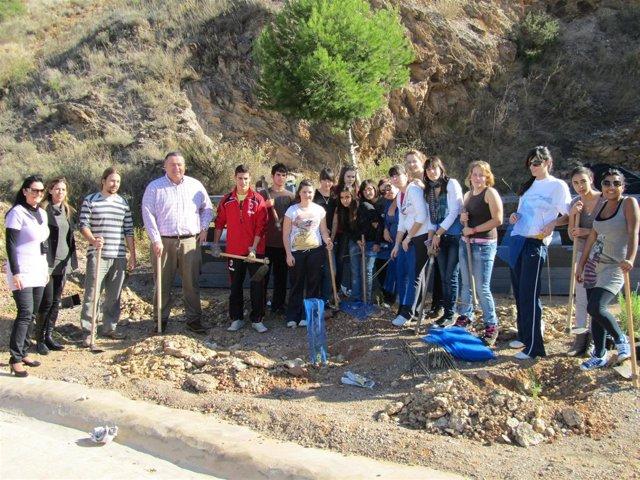 Voluntarios en la Sierra Minera de La Unión para plantar 1.000 árboles y arbusto