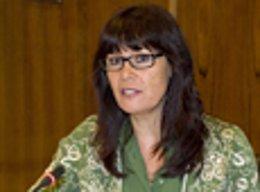 La consejera de Igualdad y Bienestar Social de la Junta de Andalucía, Micaela Na