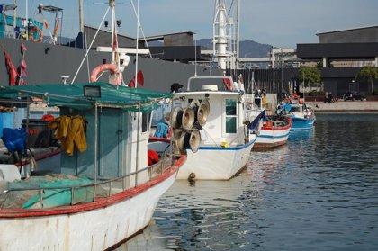 El MARM analiza con las cc.aa. la gestión para la regularización de las embarcaciones pesqueras