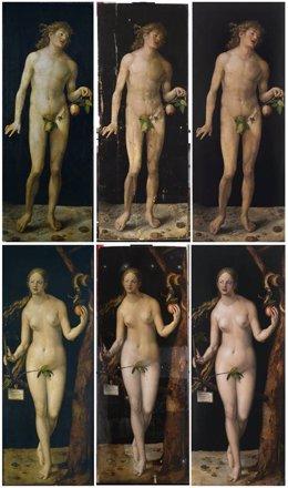 Restauración de Adán y Eva de Durero
