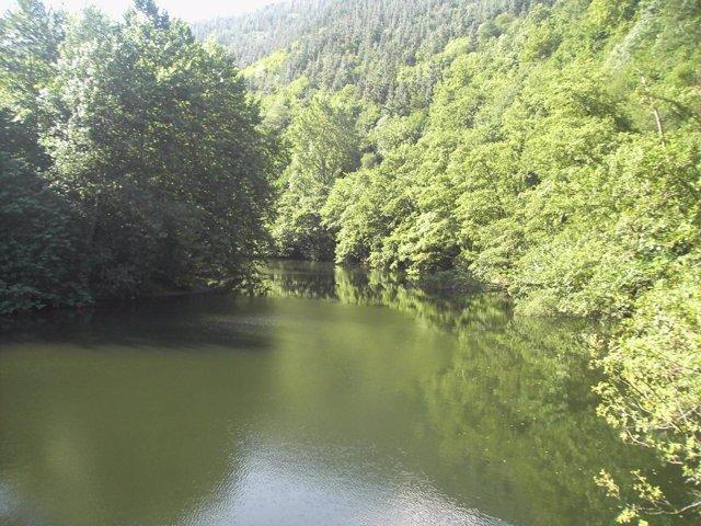 La calidad de las aguas del Bidasoa alcanza los objetivos de la Directiva Marco