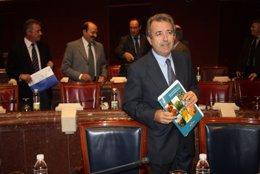 El consejero de Agricultura y Agua, Antonio Cerdá, en el Asamblea Regional donde