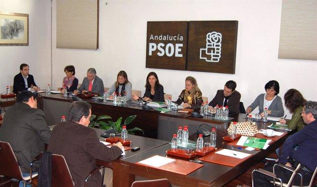 PSOE De Andalucía: Nota Y Foto Reunión Programa Marco Electoral