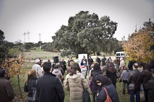 Campaña 'Plántemos un árbol por el Párkinson' en Madrid