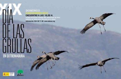Adenex recibirá este domingo a las grullas que llegan a Extremadura a pasar el invierno