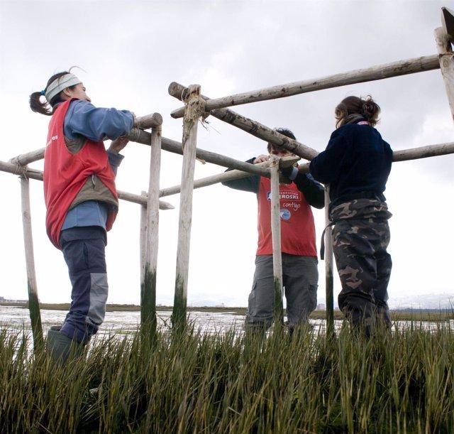 Eroski SEO Birdlife voluntariado ambiental