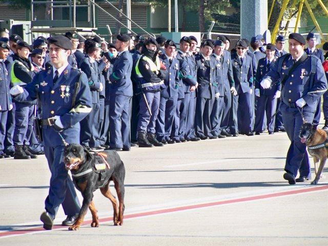 Sección de Guías y Perros Policía, en la Base Aérea de Zaragoza