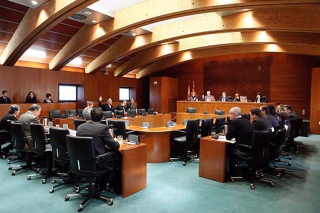Comisión de Medio Ambiente en las Cortes de Aragón