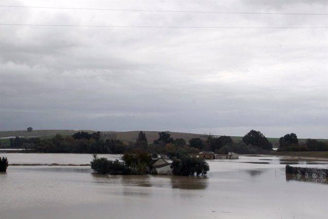 Inundaciones en Écija (Sevilla)