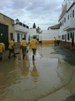 Labores de limpieza en Lora del Río tras el temporal