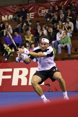 David Ferrer, finalista del Masters