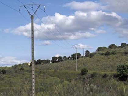 Eliminan un punto negro en el que se electrocutaban aves rapaces en el Monte de Batres