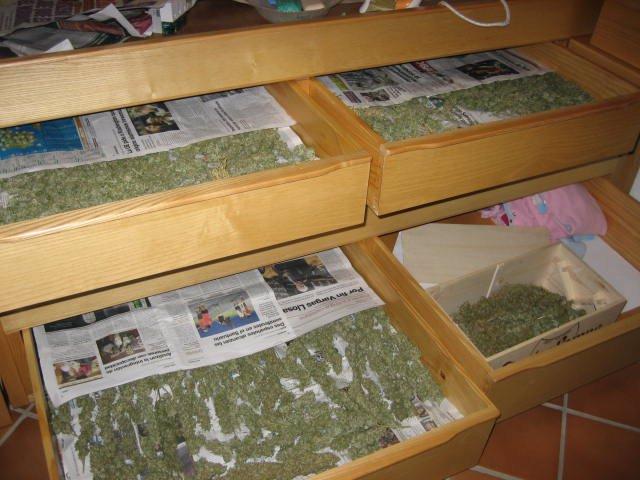 Rdo Nota Prensa Actuación Contra Tráfico Drogas (Marihuana)