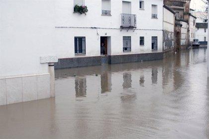 Los daños causados en Écija por las lluvias ascienden a unos 18 millones de euros