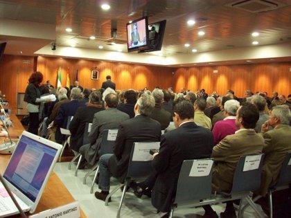 El juicio continúa esta semana con las declaraciones de otros acusados por la operación Crucero Banús