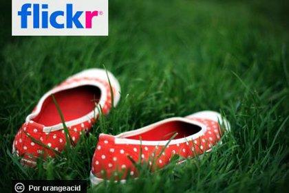 Yahoo! se plantea vender Flickr y recorta el 9% de su plantilla