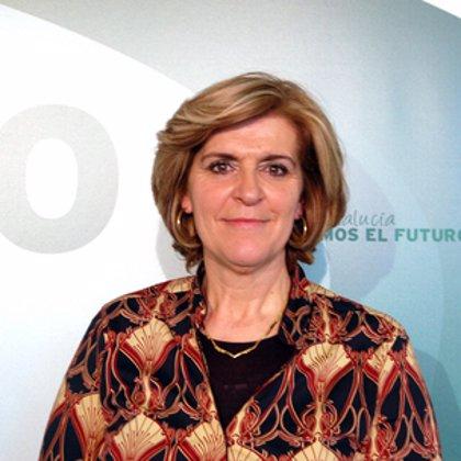 """PSOE-A critica la lectura """"sesgada"""" del PP-A sobre el informe Pisa por usarla para imponer un modelo privado"""