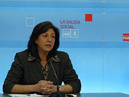 """El PSOE extremeño pide al PP que diga a los ciudadanos """"cuáles son sus propuestas"""" para salir de la crisis"""
