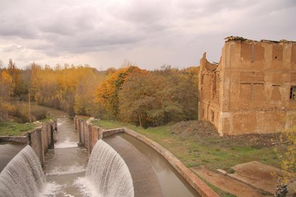 Publicado la orden que aprueba el Plan de Gestión de los humedales del Canal de Castilla