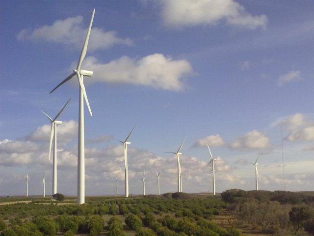 Parque Eólico Cruz de Carrutero (Palencia)
