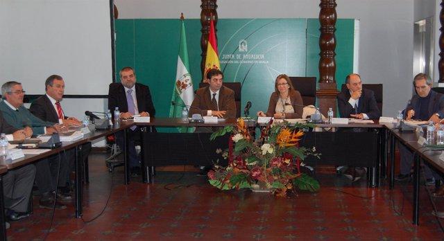 La delegada del Gobierno de la Junta en Sevilla, Carmen Tovar, preside la reunió