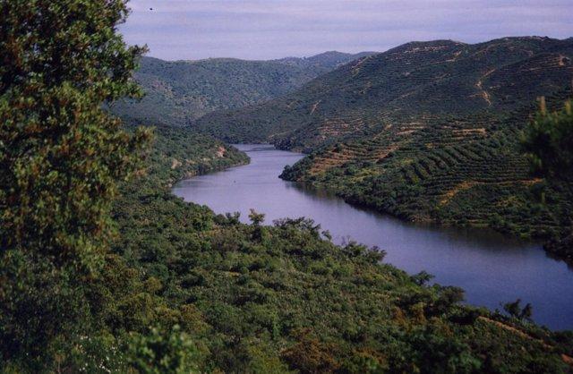Rio Guadalquivir