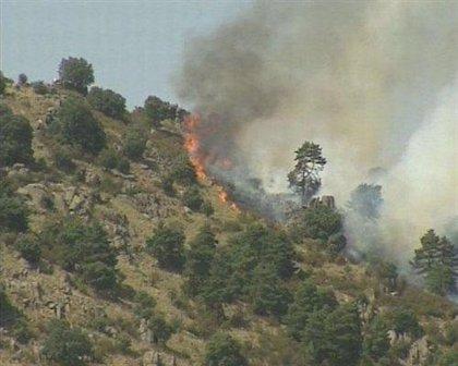 Controlado un incendio forestal que se declaró esta madrugada en Riotuerto