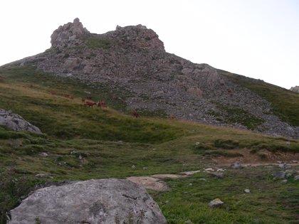 Entran en vigor el día 1 los estatutos para la gestión de Picos de Europa