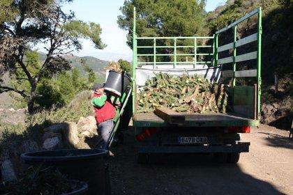 La Comunidad Autónoma elimina especies invasoras en el Parque Regional de Calblanque