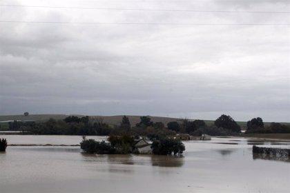 Quinta inundación en Écija en menos de un mes