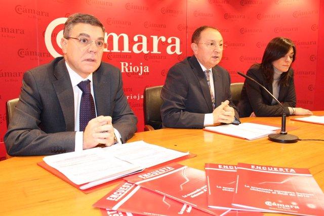 La Economía Riojana Recupera Buenos Síntomas En El Tramo Final De 2010
