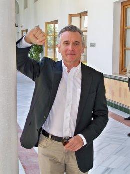 El consejero de Cultura de la Junta de Andalucía, Paulino Plata